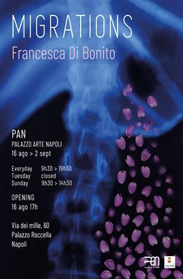 Francesca Di Bonito - progetto multimediale Migrations