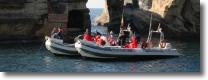 le imbarcazioni del servizio risorsa mare