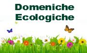 10 gennaio 2016 domenica ecologica