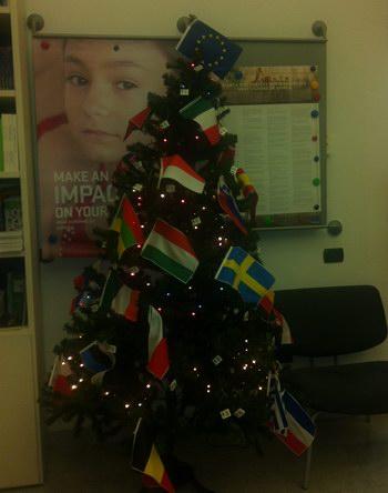 Foto dell'albero di natale del ceicc decorato con le bandiere europee