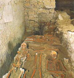 ancient rests showing a necropolis with human skeletons