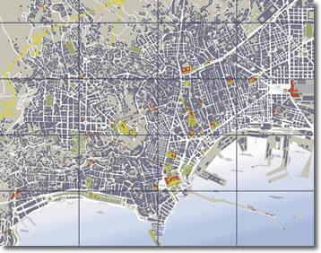 mappa topografica della città di Napoli
