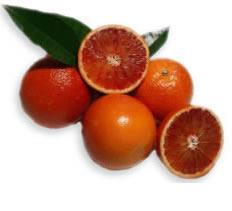 arance rosse della sicilia