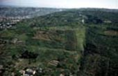 veduta area della zona verde di pianura (149.51 KB)