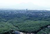 Selva di Chiaiano  (126.08 KB)