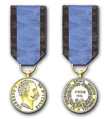 immagine della medaglia d'oro per i benemeriti della salute pubblica, anno milleottocentottantaquattro