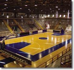 Campo di basket con tribune