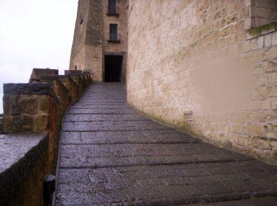 particolare delle mura del Castello
